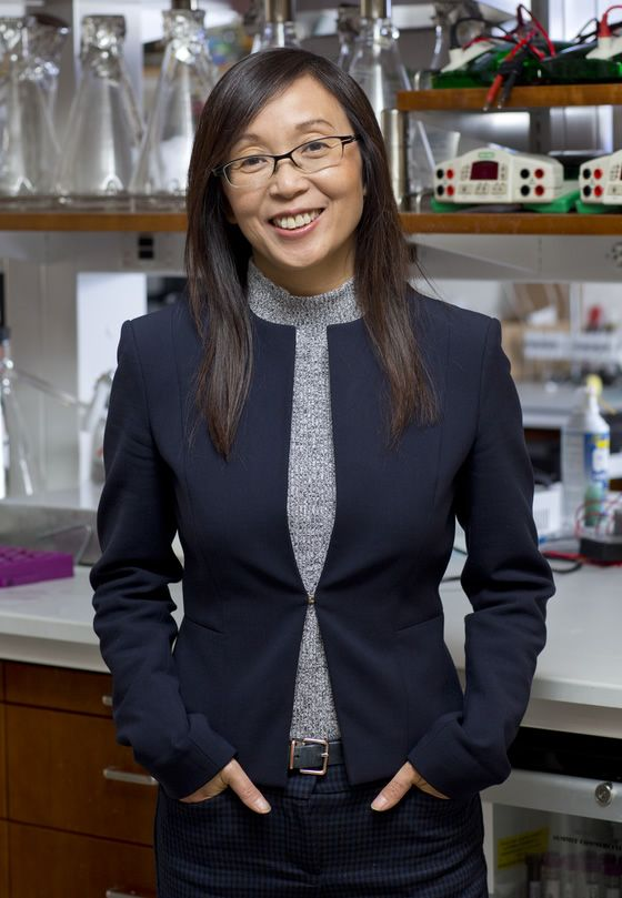 Dr. Li Gan: Director of the Helen and Robert Appel Alzheimer's Disease Research Institute and the Burton P. and Judith B. Resnick Distinguished Professor in Neurodegenerative Diseases at Weill Cornell Medicine.